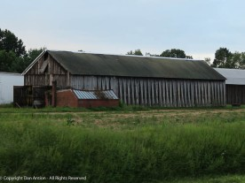 Tobacco barns have many openings, including several large doors,