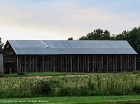 Tobacco farmers are harvesting their crop and beginning the drying process.