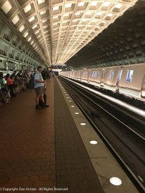 I've been on subways in many cities, but the DC Metro stations are my favorites.