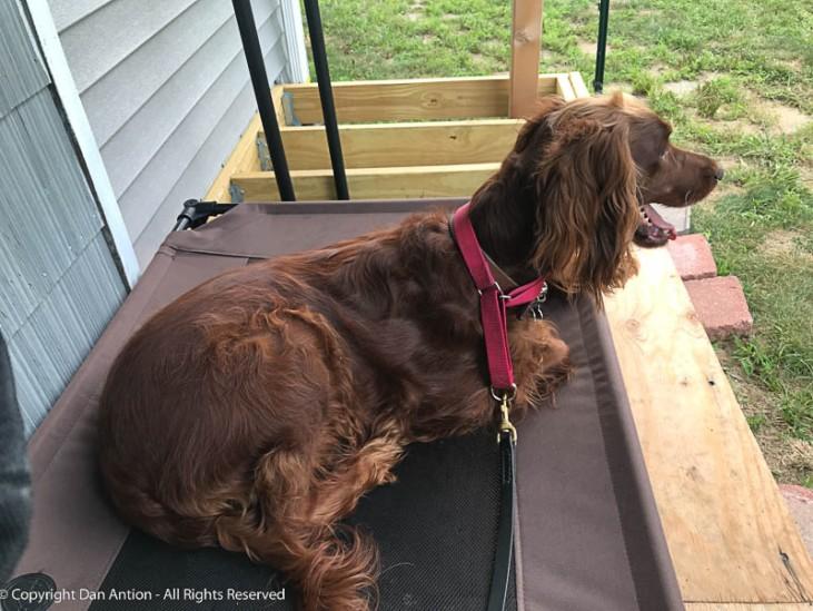 She loves sitting on her deck.
