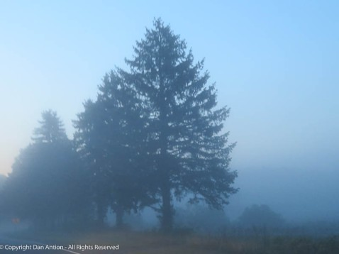 This day is off to a foggy start,