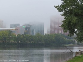 Now that it's cooler in the morning, it's still foggy when I get to the park.