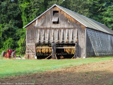 The field next to this barn is barren and the barn looks to be packed to the gills.