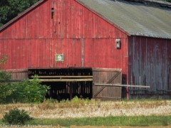 This is one of the barns I pass every day.
