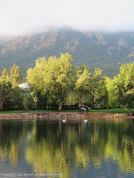 I love the mist over the mountains (and I have to get close to the swans).