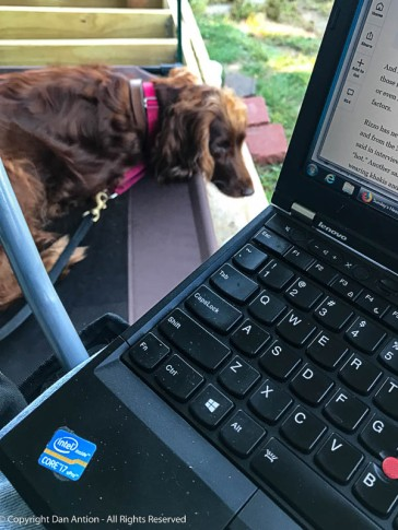 I decided to see if I could work on my laptop while sitting with Maddie.
