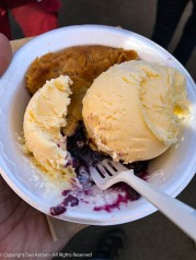 Blueberry Pie and Ice Cream from the Vermont building.