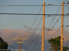 For Peter - These are the main distribution lines on their way to the airport.