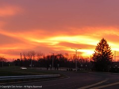 The sky looked like it was on fire as I approached Great River Park