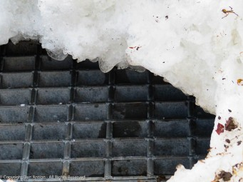 On the corner, this storm drain was buried under the pile left from the snow plow.