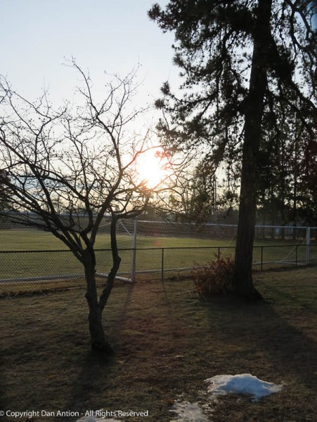 Sunrise over Maddie's park