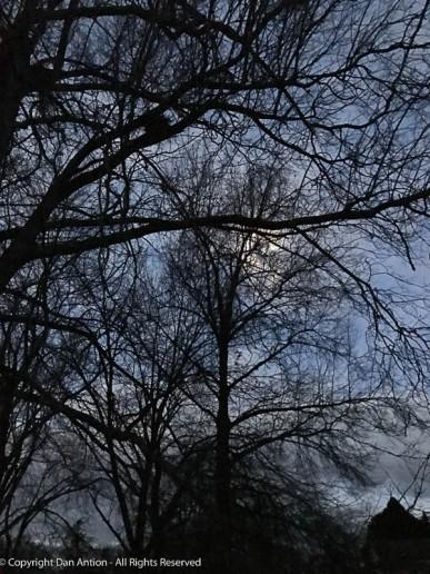 Full moon on a winter night.
