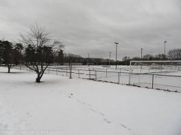 On Saturday, it looked like we were walking in winter.