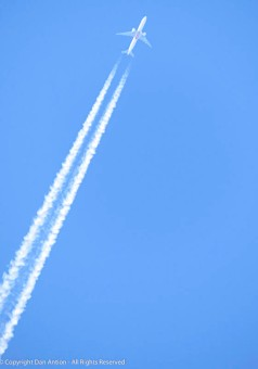 Contrails overhead.