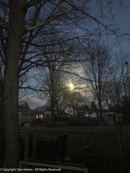 Longer days and a full moon are giving us a little bit of twilight.