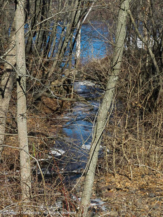 This little stream is one of hundreds around here that feed the Connecticut River (in the background).