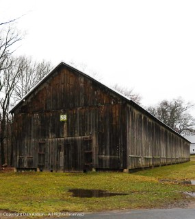 I may have taken a picture of this tobacco barn before. They tend to look alike, but the look changes with the seasons.