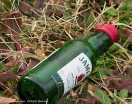 A better class of litter.