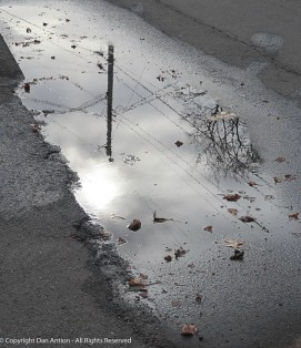 My favorite puddle.