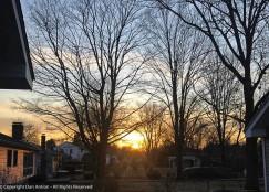 Sunrise over the trash bins