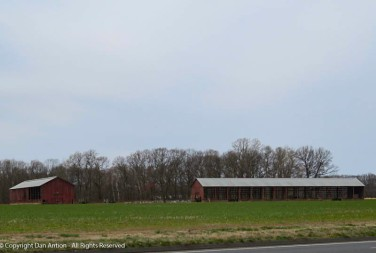 Goodbye barns