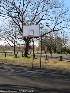 I like the decision Parks & Rec made. Leave the park open, remove the hoops.