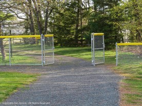 Since they installed these gates last fall, we've never seen them open. until today.