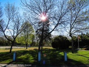 Near the Veterans Memorial in the park.