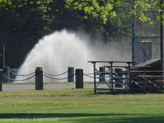 A sure sign of summer, Dan trying to get the prefect sprinkler photo.