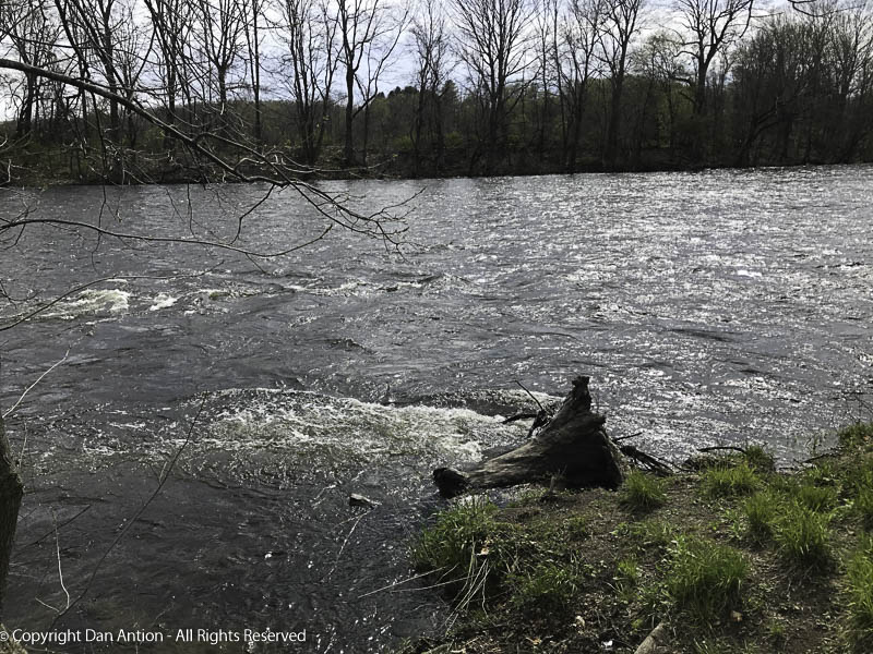 This is the Farmington River, on its way to join the Connecticut River.