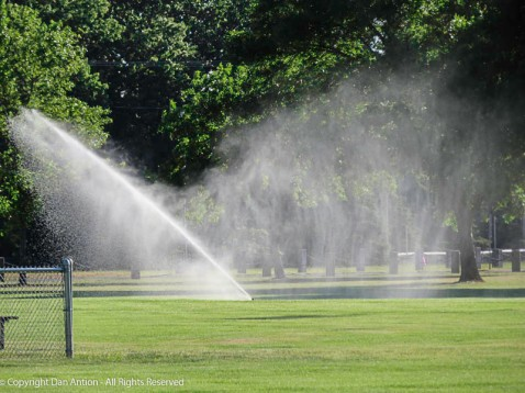 I know, Another picture of the sprinkler spray. I seem to be fascinated by this.