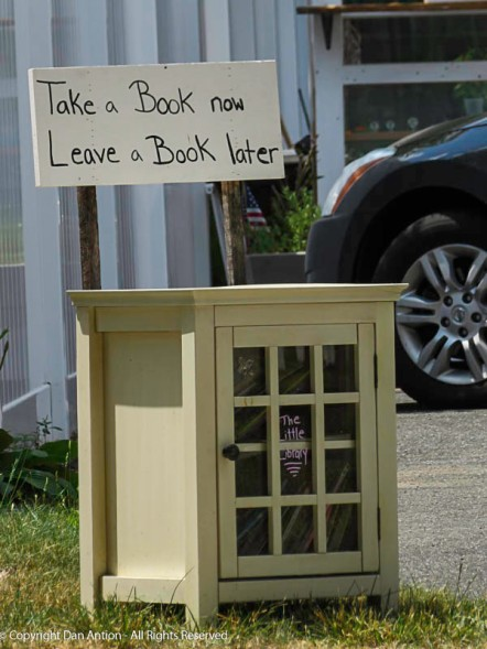 I always love finding these little free libraries.