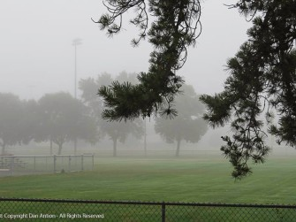 Foggy morning, but we'd rather walk now than after the sun burns this off.