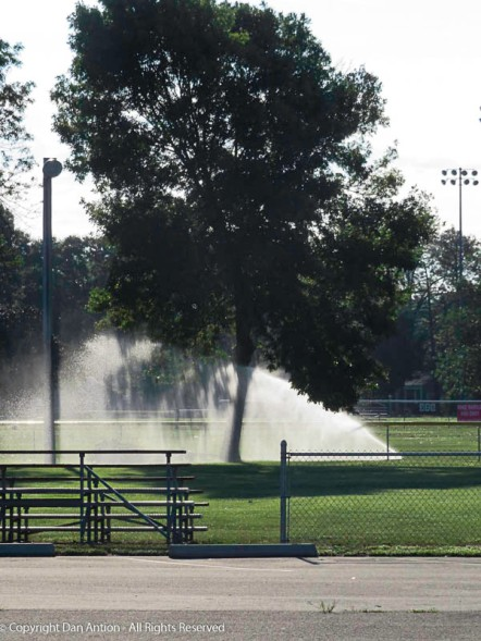 We're still watering the fields.