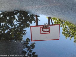 I haven't seen a puddle on the basketball court in a very long time.