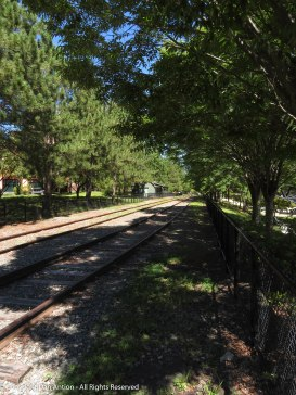 Railroad tracks ran parallel to the canals to support the mills.