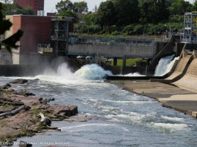 In non-pandemic times, visitors can observe the fish pathway around the Holyoke Dam.