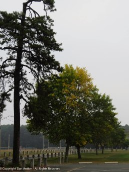 Leaves are starting to turn.