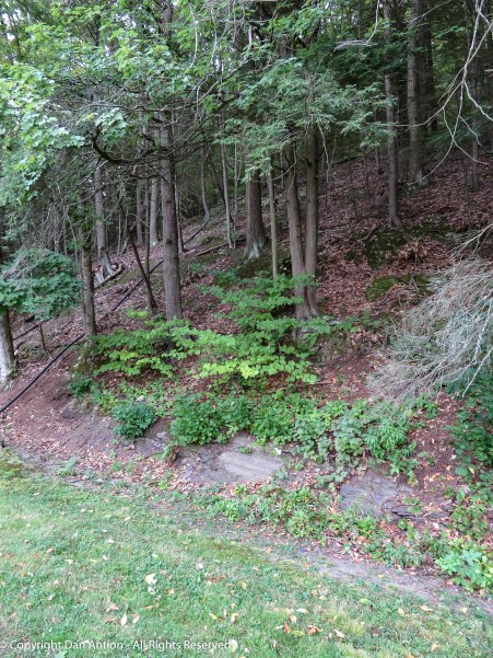 Prior to the incline, it was either hike this or go up a narrow path on horseback.