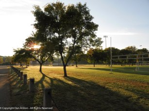 I love the long shadows in the park.