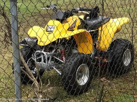 Smokey found some wheels. I chased hi off our neighbor's ATV.