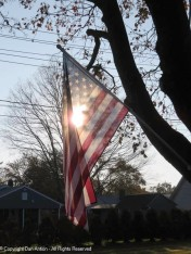 I couldn't resist taking another photo of this flag.