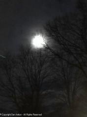 Full moon Saturday night.