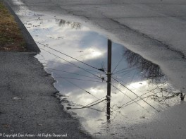My favorite puddle, going the other way.