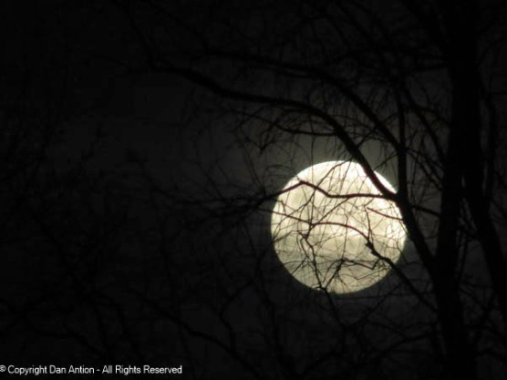 People liked the full moon shot, so I decided to include another.