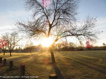 Looking across Veterans park at the rising sun.