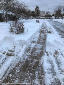 The sidewalk is ready for a man and his dog.