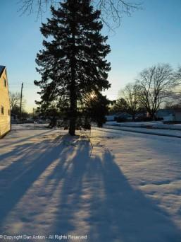 Long shadows on the snow.