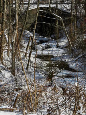 This little tributary is about 400' (122m) from joining the Connecticut River - if it doesn't freeze first.