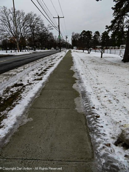 They cleared the snow along the sides of the walk to the park. Maddie was able to re-sniff all her turf.